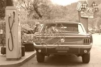 Mustang V8 ´65 rally-pac
